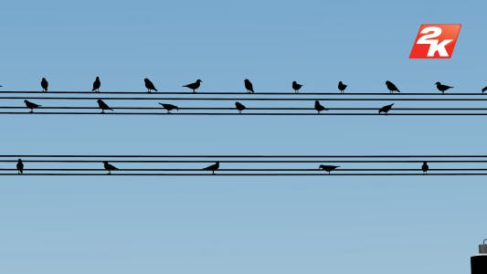 Cover Image for Silhouette Birds