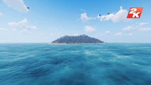 Island and Birds