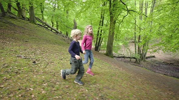 Thumbnail for Two Walking In Forest Children