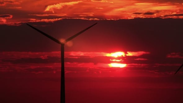 Cover Image for 3 Wind Mills Against Red Sunset