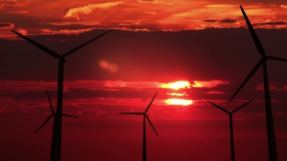 Thumbnail for A Lot of Wind Mills Against Red Sunset