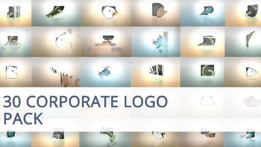 Thumbnail for 30 Corporate Logo Animation Pack