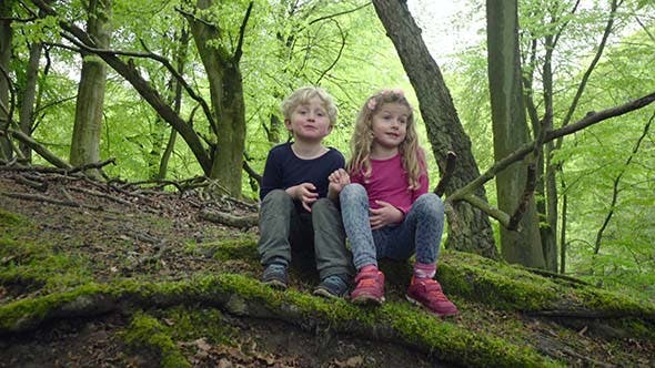 Thumbnail for Kids Hiking In The Forest