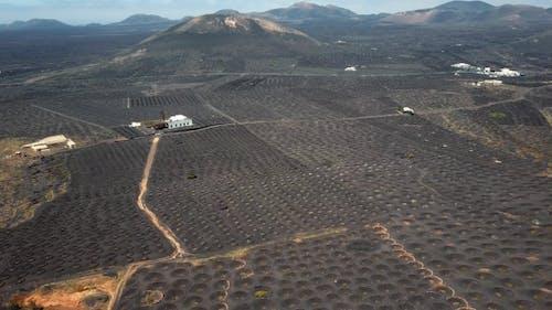 Flying Over Wine Valley of La Geria, Lanzarote, Canary Islands, Spain
