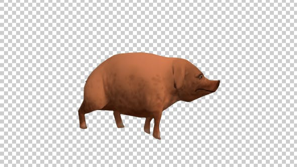 Thumbnail for Cartoon Pig Walking