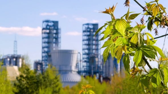 Thumbnail for Branch with Green Leaves on the Background Oil Refinery