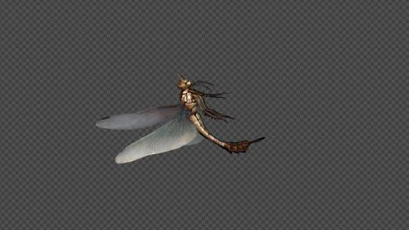 Thumbnail for DragonFly Die Pack 4 In 1