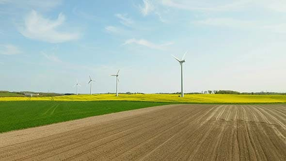 Cover Image for White Windmills Standing In A Field