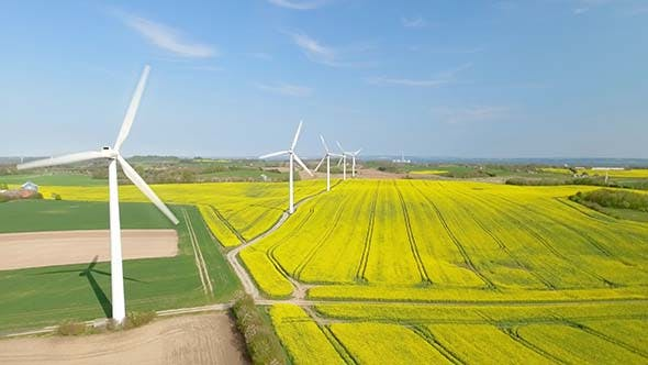 Cover Image for Wind Turbines Generating Electricity