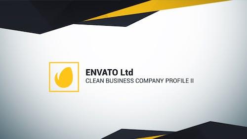 Clean Business Company Profile II