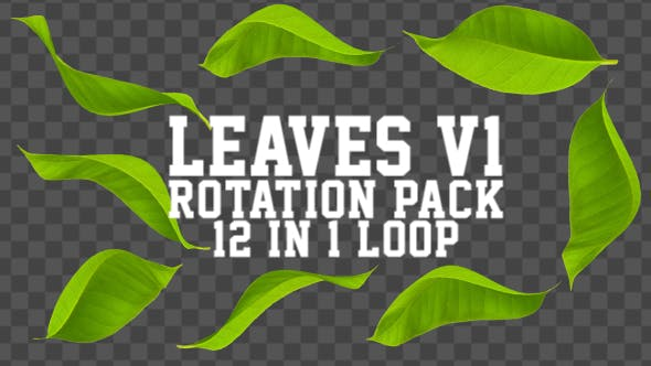 Leaves Rotation Pack V1 12 in 1