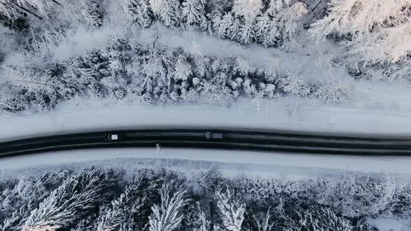 Cars Drive Along Black Highway Across Tranquil Winter Forest