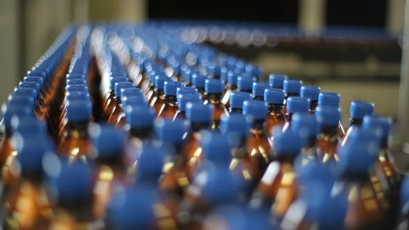 Bottles on a Conveyor Belt Factory
