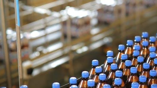 Massenproduktion eines Bieres