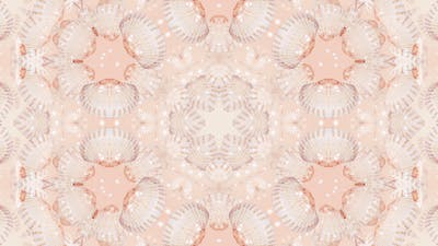 Sea Shell Kaleidoscope