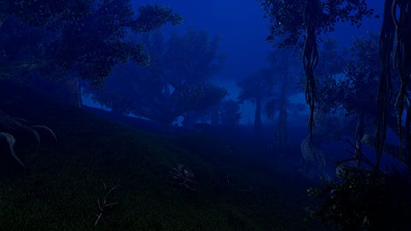 Thumbnail for Night Deep Forest