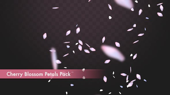 Thumbnail for Cherry Blossom Petals Pack