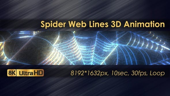 Spider Web Lines 3D Animation