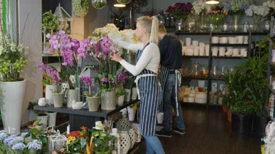Thumbnail for Woman in Uniform Working in Floral Shop