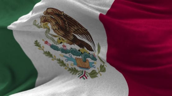 Cover Image for Mexico Flag in the Wind