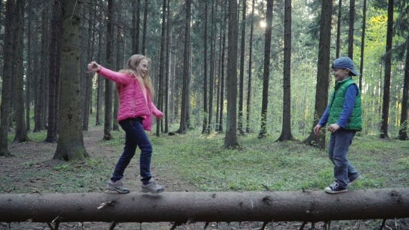 Thumbnail for Children Is Walking on the Log in the Forest