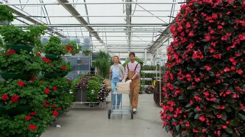 Curly Blonde Woman Shopping for Decorative Plants on Floristic Greenhouse Market