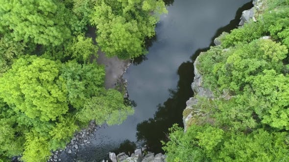 Thumbnail for Aerial Footage. Fly Over River in Fores