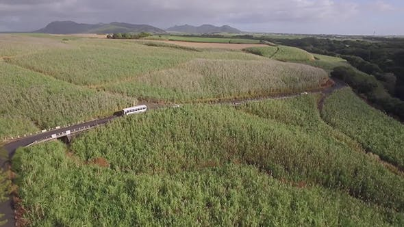 Thumbnail for Flying Over Mauritius with Coastal River, Town and Sugarcane Fields