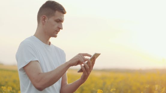Thumbnail for Farmer Hands with Tablet in a Wheat Field