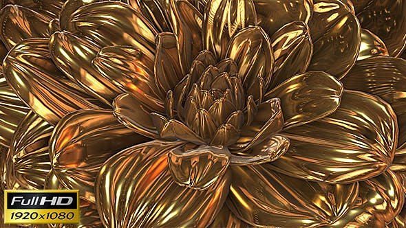 Thumbnail for Gold Flower