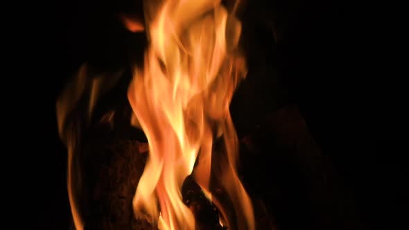 Thumbnail for Burning Fire In The Fireplace. Wood And Embers In The Fireplace