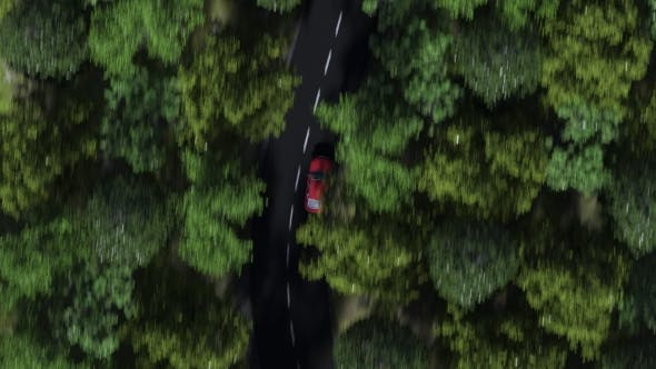 Thumbnail for Red Car Speeding on a Forest Road