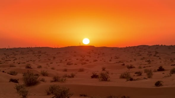 Cover Image for Golden Sunset  Over the Desert Landscape in United Arab Emirates
