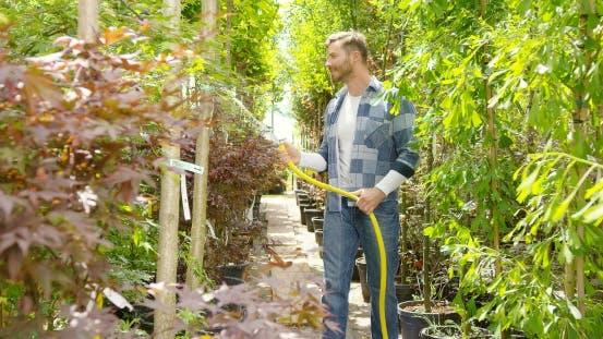 Man Watering Plants in Garden