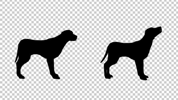 Thumbnail for Dog Silhouette