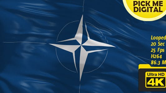 Cover Image for NATO Flag 4K