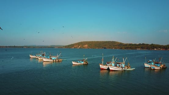 Thumbnail for Indian Fishing Boats and the Birds