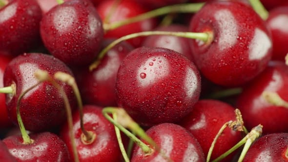 Cover Image for Juicy and Fresh Cherries