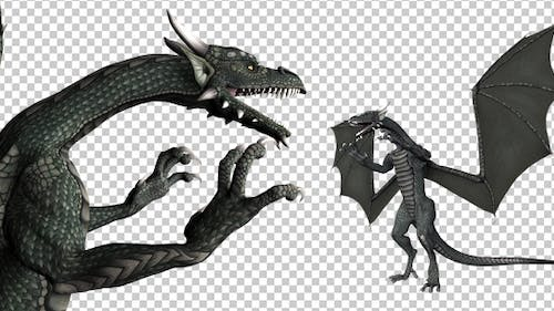 Dragon - Pack of 5