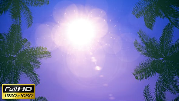 Thumbnail for Palms Loop Background
