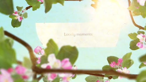 Lovely Moments