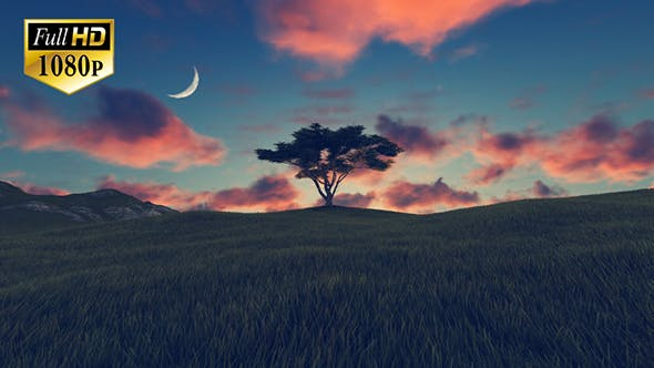 Thumbnail for Tree On Hill 3