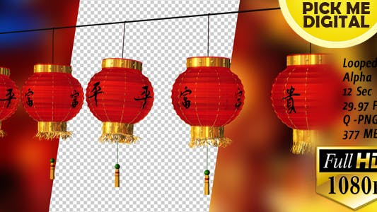 Cover Image for Chinese Lantern Right Panning
