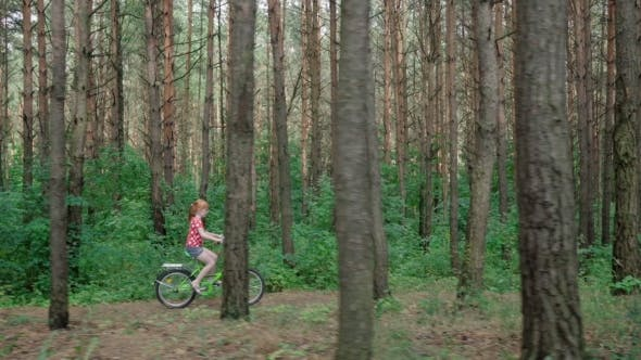Thumbnail for Little Girl Riding a Bicycle in Forest