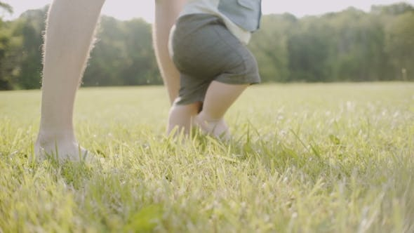 Thumbnail for The First Steps of the Child on the Grass