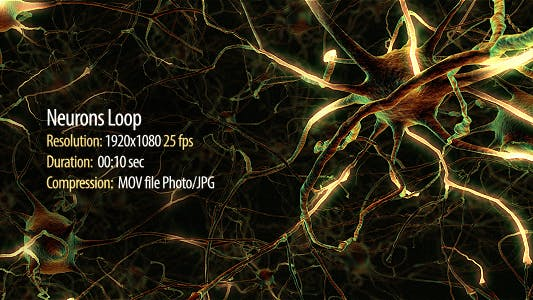 Cover Image for Neurons Loop