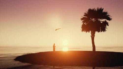 Arab Dishdasha Sunset Silhouette Arabic Man with Bird on Desert Sands