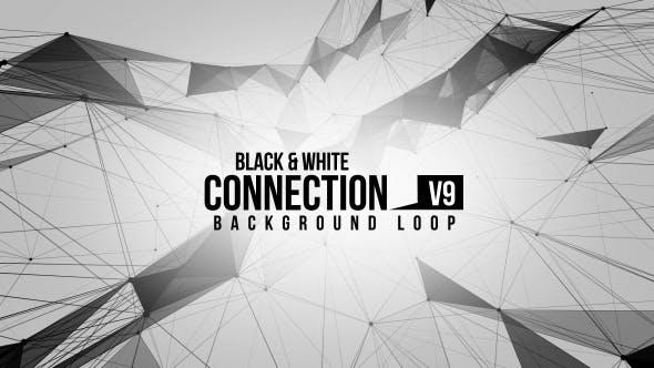 Black And White Connection V9