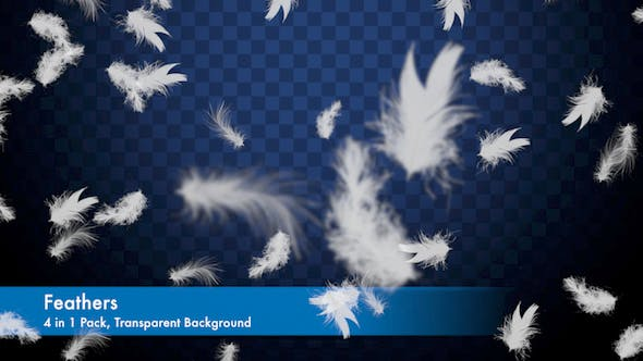 Cover Image for Feathers Overlays Pack