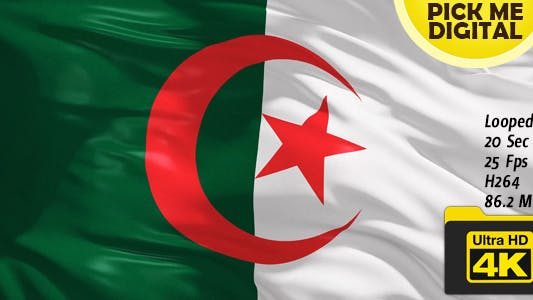 Thumbnail for Algeria Flag 4K
